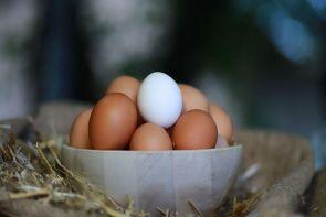 yumurta pratik bilgi ana görsel