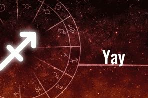 yay-header