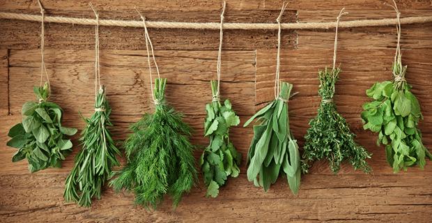 Zayıflamak İçin Metabolizma Hızlandırıcı Besinler Nelerdir?