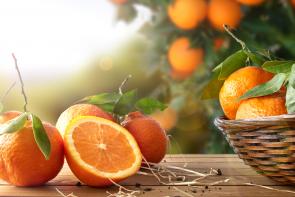 Portakaldan Daha Fazla C Vitamini İçeren Besinler