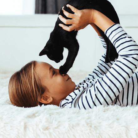 Kedi Alerjisi,Belirtileri Ve Tedavisi