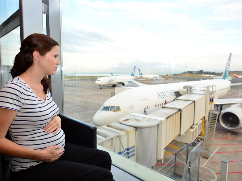 Hamile Uçak